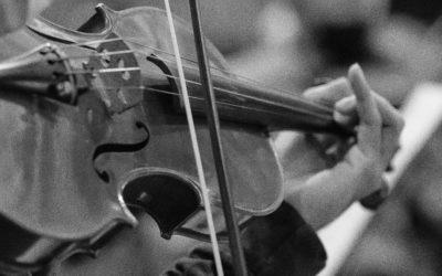 Freie Musiker*innen für Remberti-Remberti für freie Musiker*innen